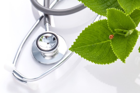 Naturopathic Licensure in Maryland