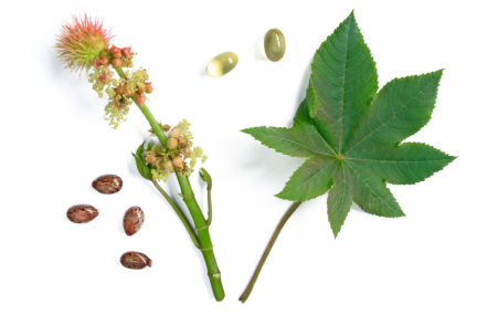 Castor Oil: Topical Pain Relief